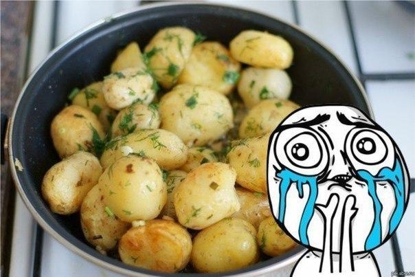 демотиваторы про картошку с мясом колдуны